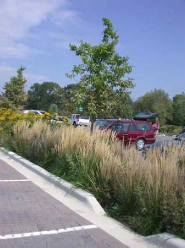 green parking 1