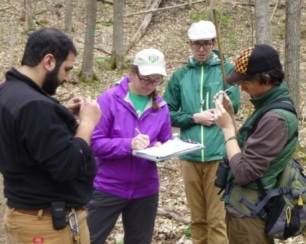 The invertebrate team working hard at Clark Reservation. Photo by Julie Lundgren