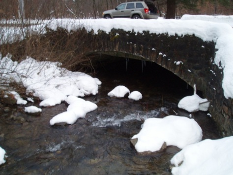 Cleared roadway over stream xing_Allegany_DM