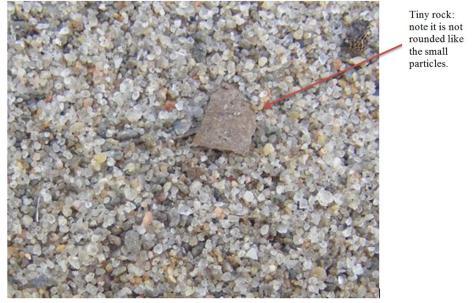 Hamlin_Beach Sand