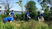 SCA Hudson Valley AmeriCorps members remove invasive species in the Habitat Garden at Hudson River Park in Manhattan.