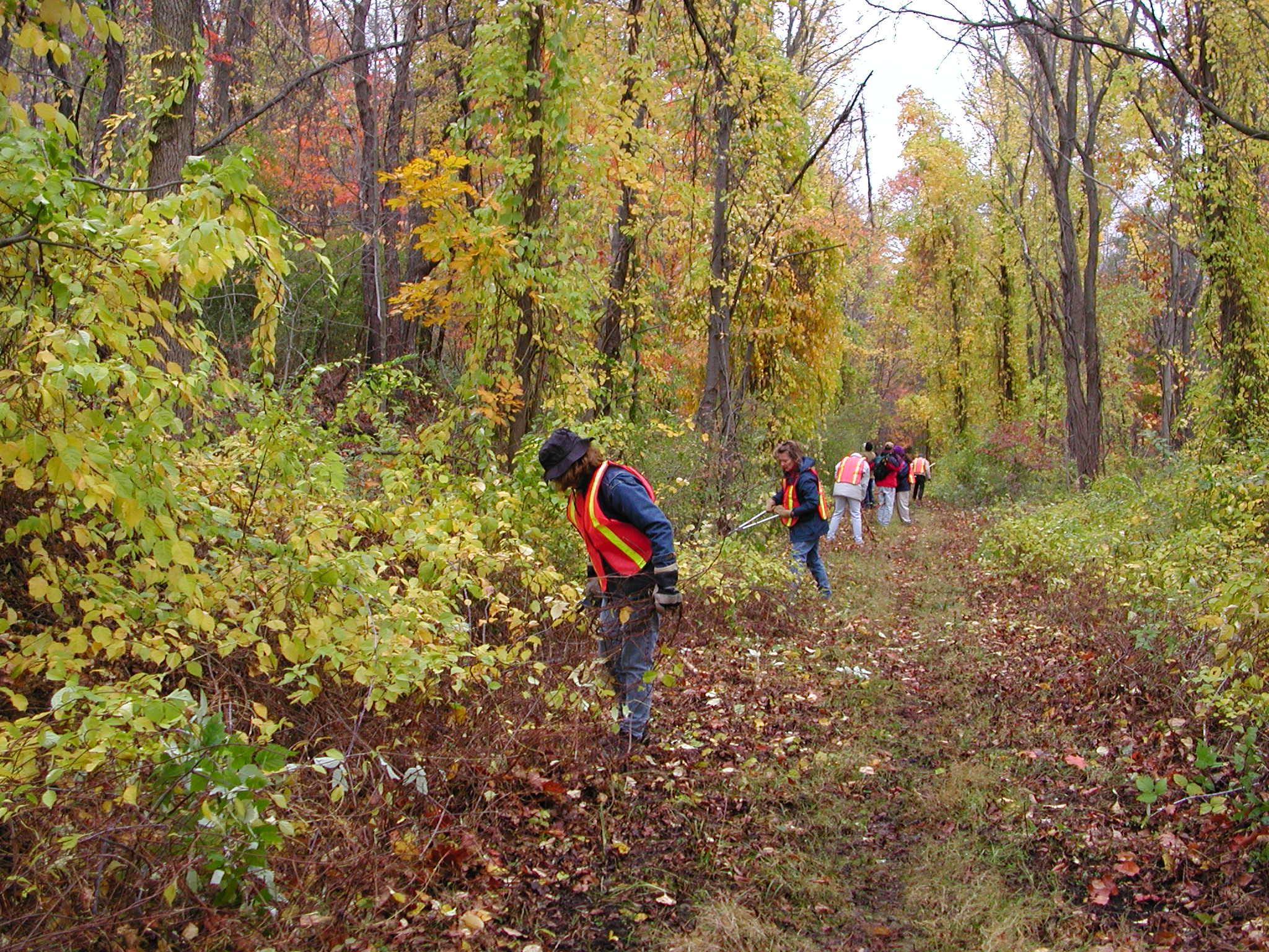 Black Diamond Trail Volunteer Work Day