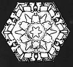 Hexagonal Bentley & Humphreys P. 45
