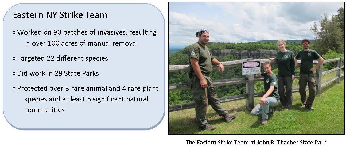 Eastern Stike Team
