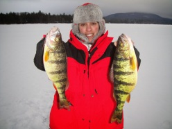TP Ice perch