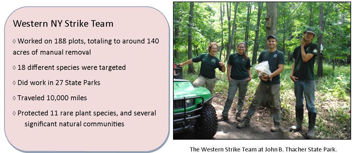 Western Strike Team