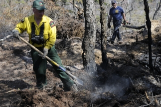 Mopping up fire remnants, Minnewaska State Park , April 2008, OPRHP photo