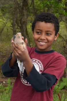 Third Grade Student ready to release a Mourning Dove, photo by Tom Barber, c 2015