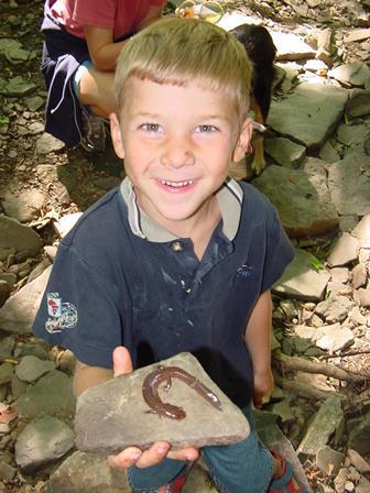 Boy Salamander