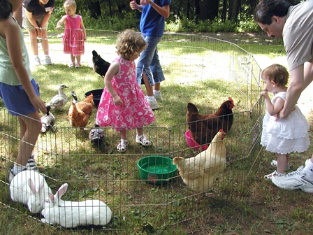 John Jay kids in pen with Rabbits and Chickens