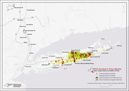Southern Pine Beetle Map, Tom Schmeelk, NYS DEC