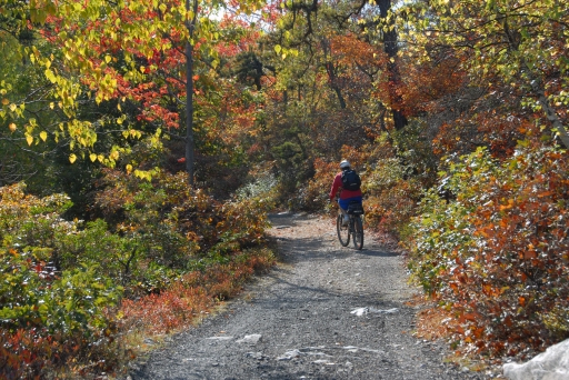 biker-on-trail-fall-lake-awosting-minnewaska-sp-_0053