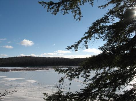 13-hemlock-winter-julie-lundgrennynhp