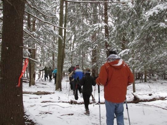 hwa-survey-alyssa-reid-state-parks