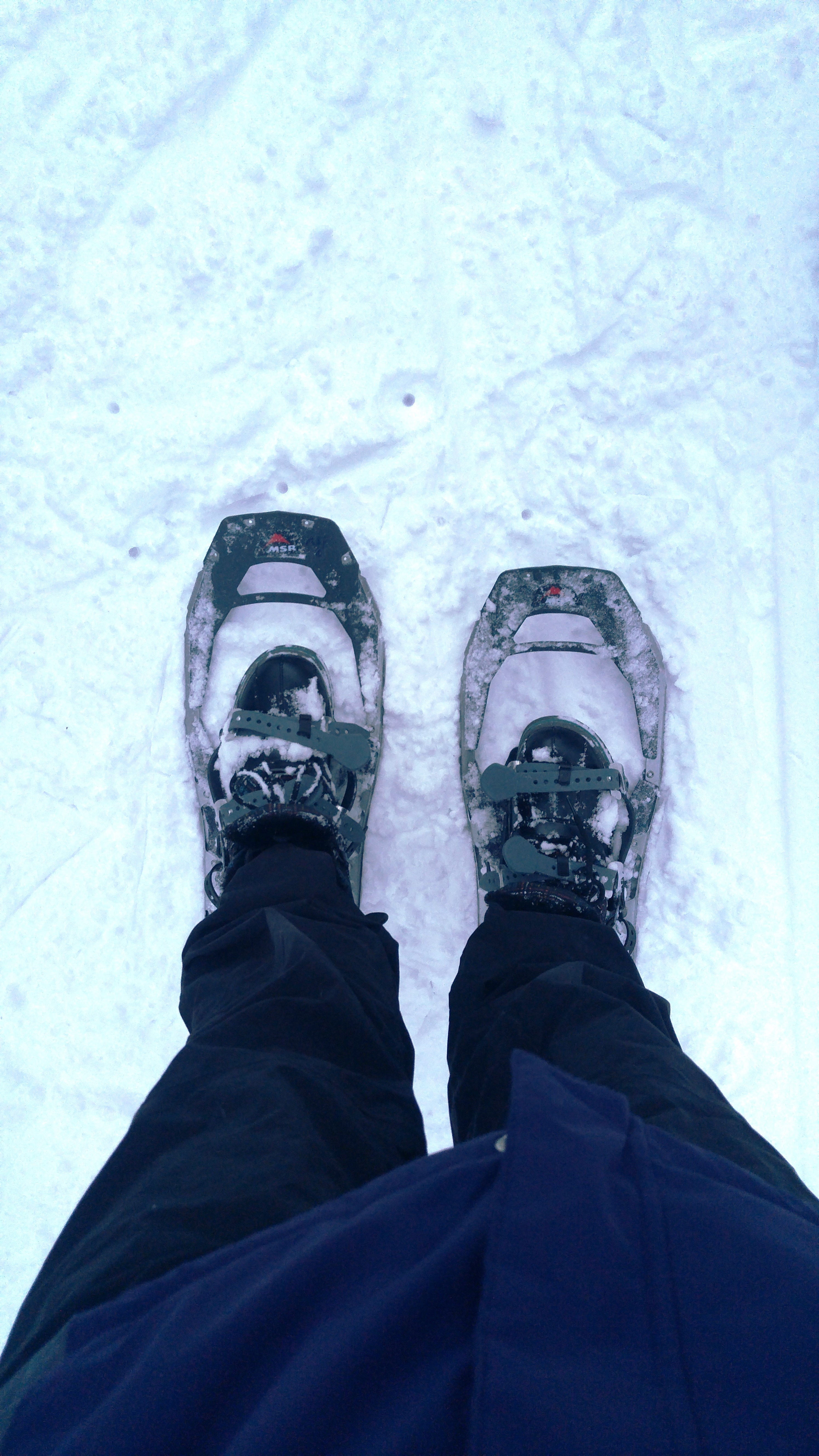 snowshoes_feet