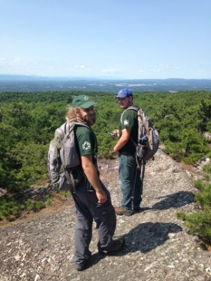 Strike Team members David Hendler and Mike Ferri survey for Southern Pine Beetle at Schunnemunk State Park, Photos by Casey Bannon, State Parks