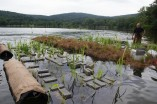 Constructing the floating wetland! Some of the plants are submerged, while others are elevated on an island., photo by State Parks
