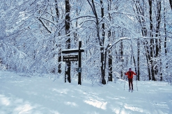 Skiing in a winter wonderland, photo by State Parks