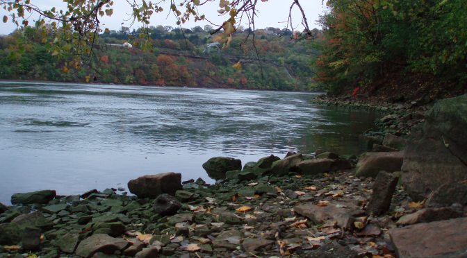 The Niagara Gorge at Low Water