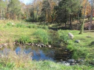 Installing wetlands project