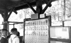 Display boards, image courtesy of Allegany State Park Historical Society.