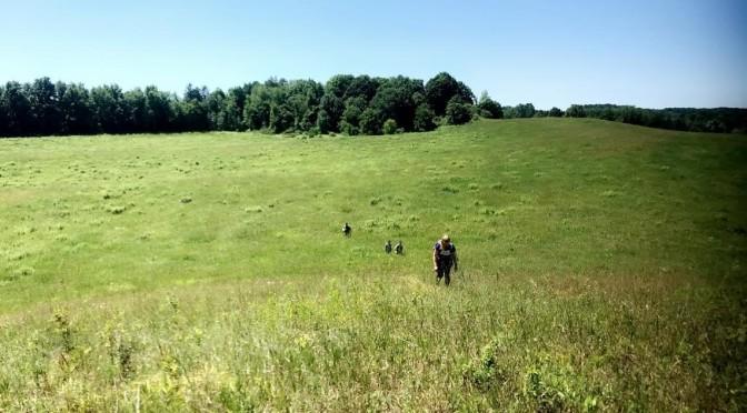 Excelsior Conservation Corps Works Alongside Parks to Conserve Historical Site