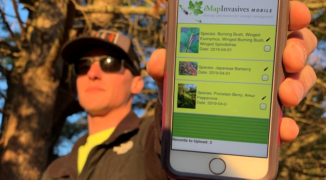 iMapInvasives and You Can Too!