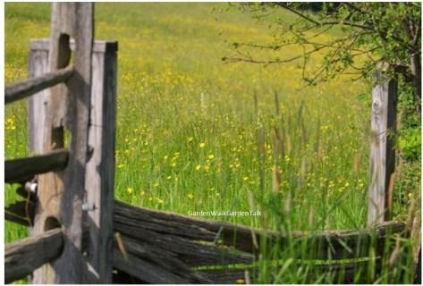 fenced-field-knox-farm_gardenwalkgardentalkATT