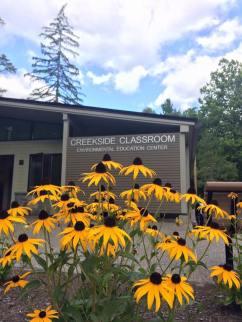 Pollinator garden in Saratoga Spa State Park