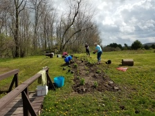 Planting the pollinator garden in Glimmerglass State Park