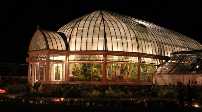 Growing the Future in Gilded Age Greenhouses