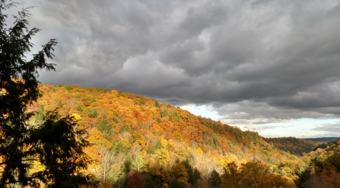 Get Out and Explore… The Finger Lakes Region of New York State Parks
