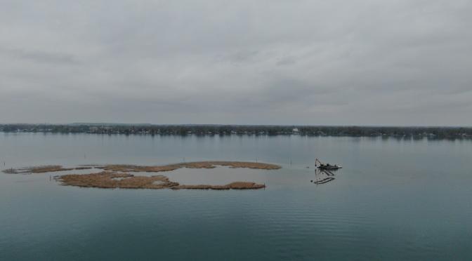 State Parks Strengthens Niagara River Island Ecosystem